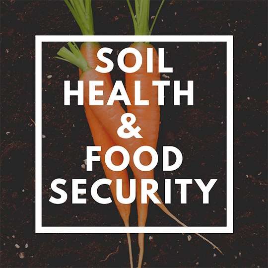 What You Need to Know About Soil and How it Relates to Your Health